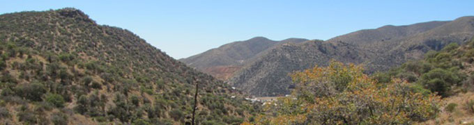 about_bisbee